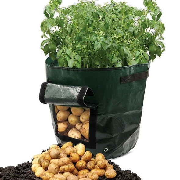 🔥Spring Hot Sale 50% OFF🔥 50L Large Capacity Potato Grow Planter PE Container Bag- Buy 4 Free shippng