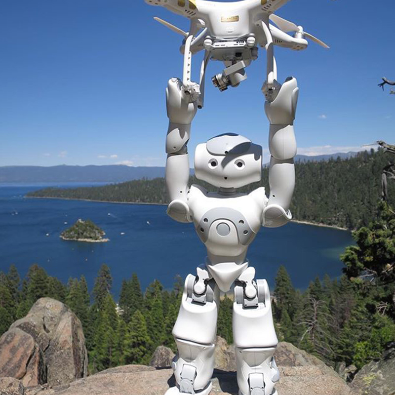 Early Learning Skills Growth Robot